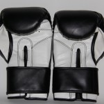 Boxing Gloves - Butch Hiles